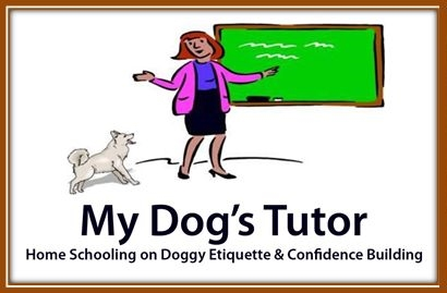 My Dogs Tutor