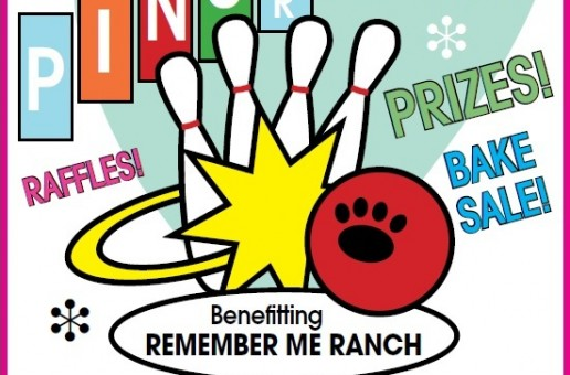 Pins for Paws – June 1st!