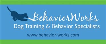 BehaviorWOrks