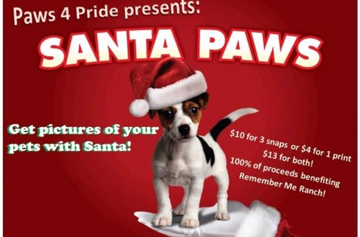 Santa Paws – Pet Photos With Santa