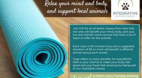 Yoga Classes at Integrative Veterinary Service