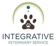 IVS logo