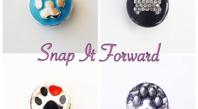 Snap It Forward – Jewelry Fundraiser